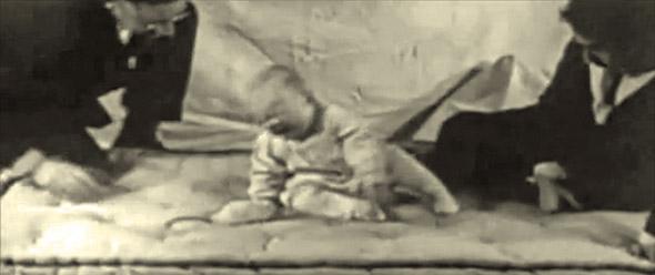 Крошка Альберт4